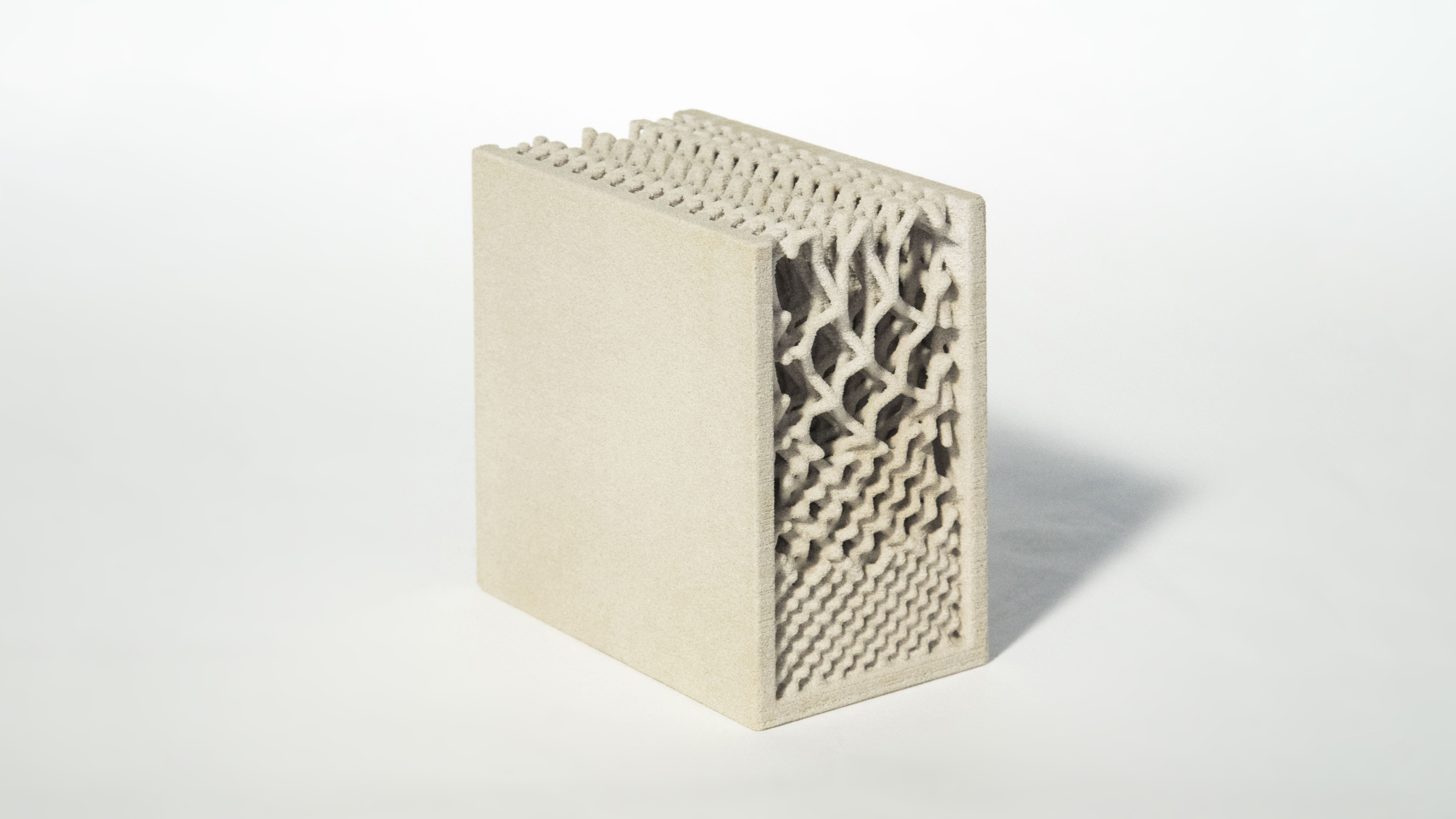 3D printed graded lattice for structural differentiation (Raphael Pastrana, Francisco Regalado)